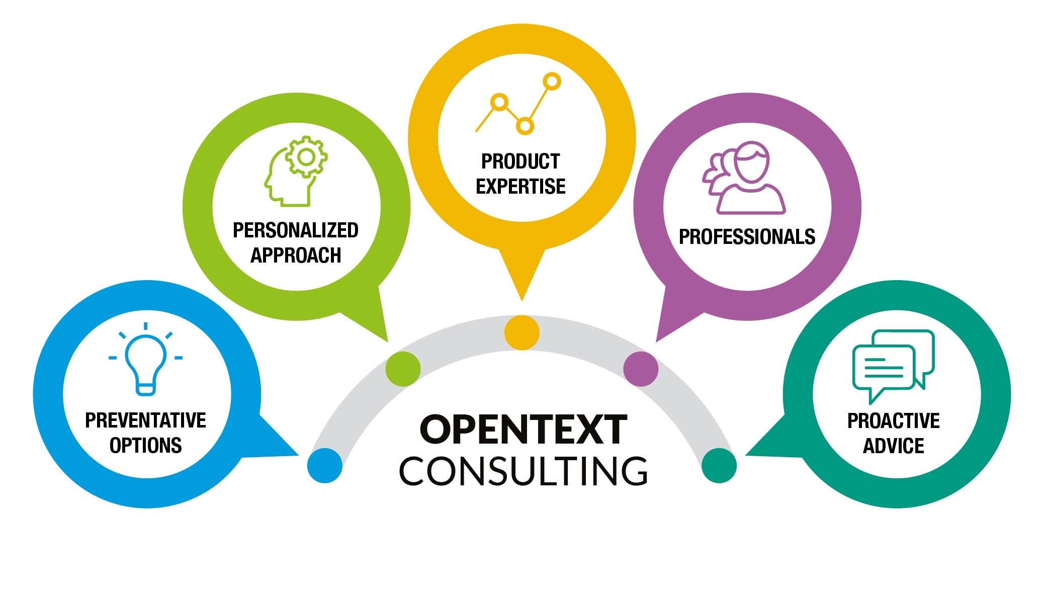 OpenText five consulting areas graphic